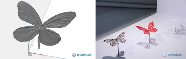 3D scan the butterflies