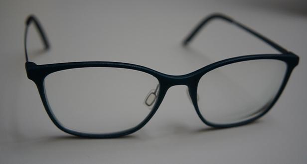 Original 3D printed glasses