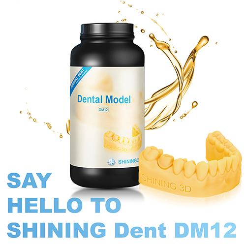 DM12 Resin