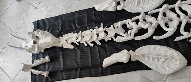 The single pieces of the Smilodon Populator sculpture